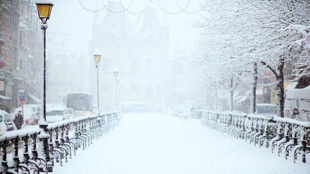 neige02122020.jpg
